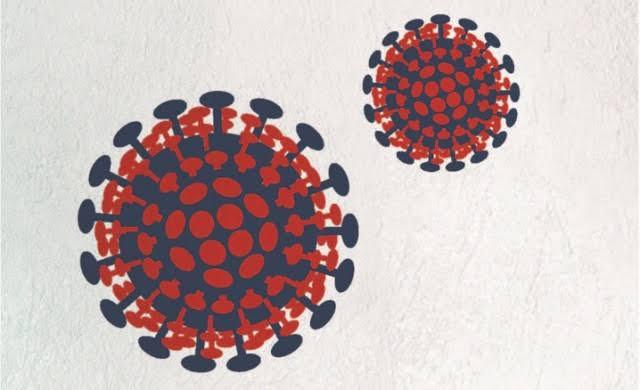 Koronavirüs'ten Vefat Edenler Şehit Olur mu? Şartları Var Mıdır?